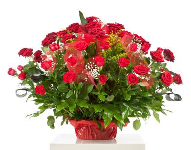 55 Premium Roses In a Basket