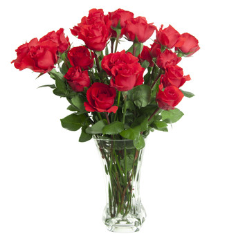 19 Light Red Roses Bouquet
